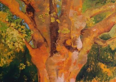 Ahorn 1: Fruehling - Oel auf Leinwand, 80 x 80 cm, 2007